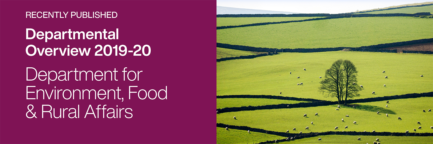 Recently Published: Departmental Overview: Department for Environment, Food and Rural Affairs 2019-20